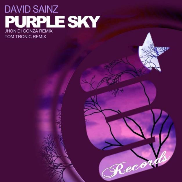 cover david sainz - purple sky EP [evolution senses records]